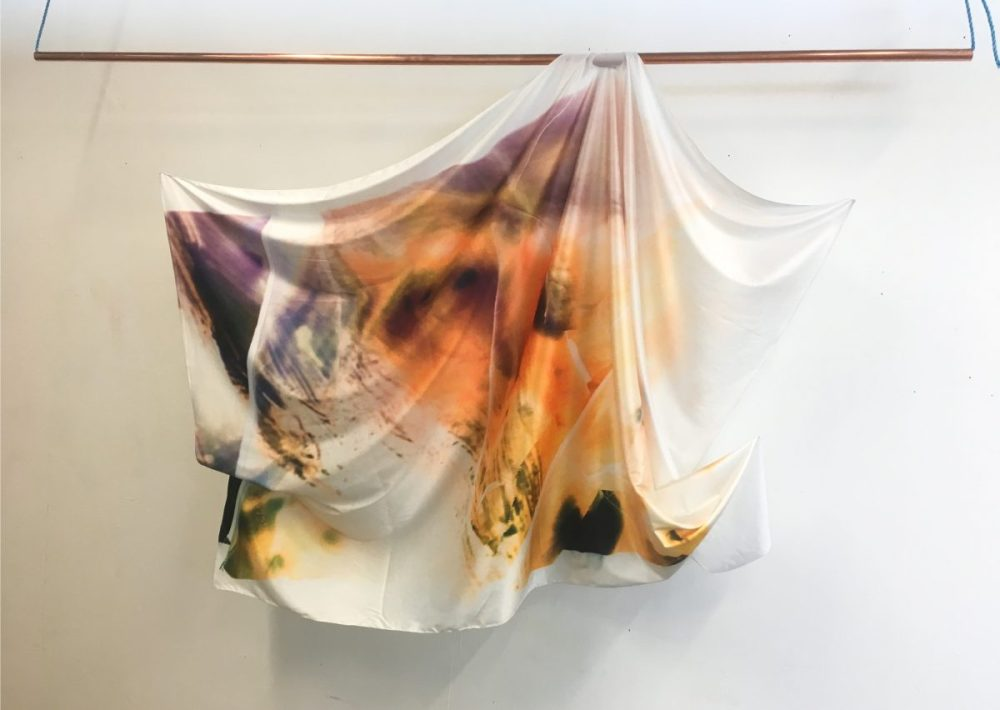 Images from Evolve are printed onto silk.